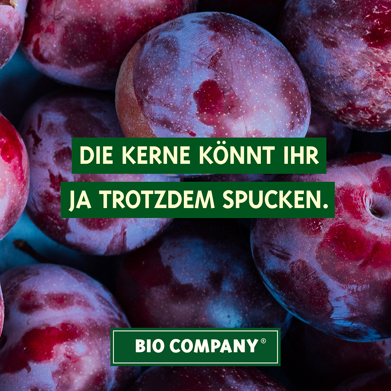 KW17_1_Mai_Steinobst_Ver2