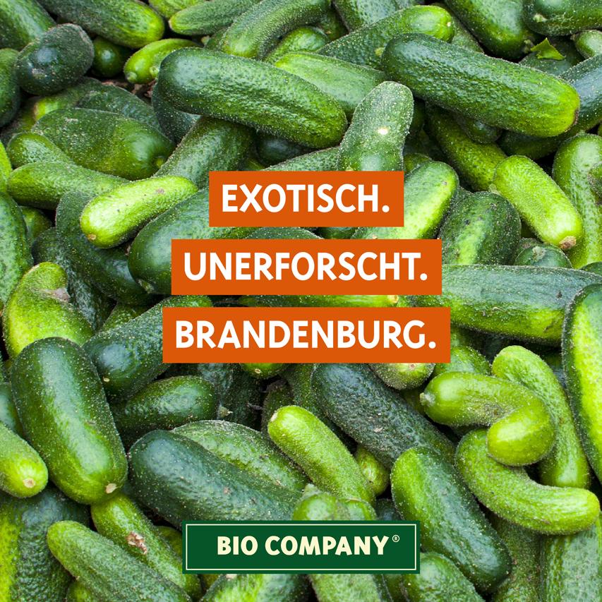 KW21_190508_Sommerurlaub_CO2_Brandenburg