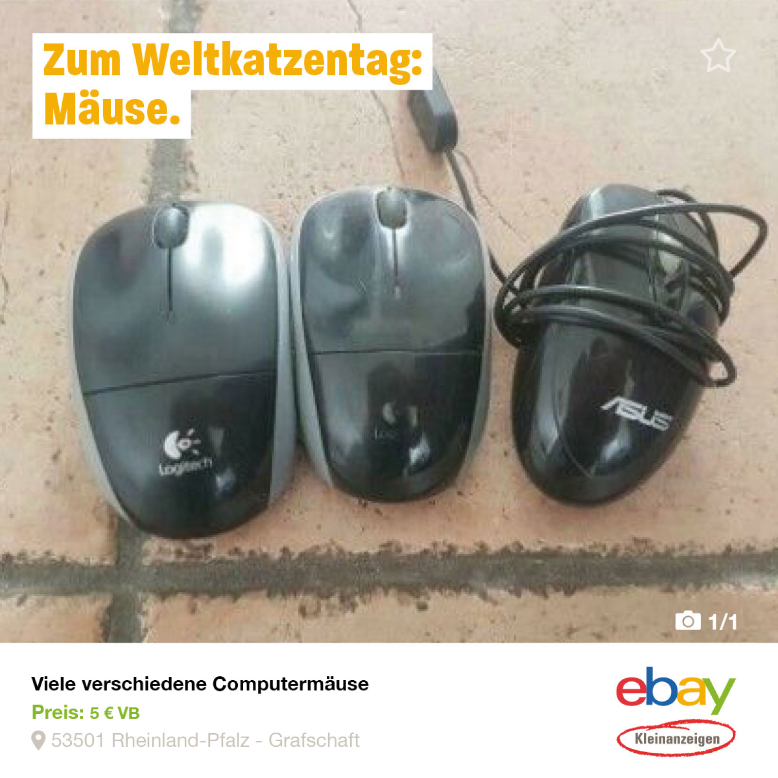 ebay_postings_14x14_rz_5